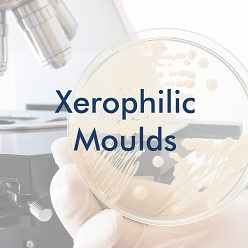 Xerophilic Moulds